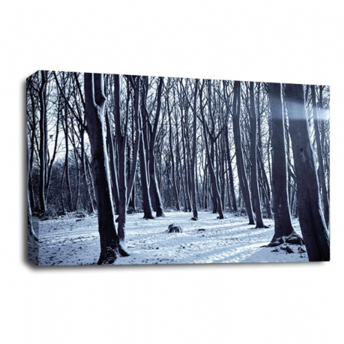 Winter Forest Canvas Art Snow Frost Trees Wall Picture Print